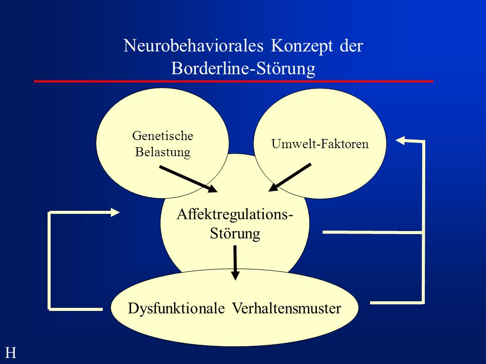 Neurobehaviorales Konzept der Borderline-Störung