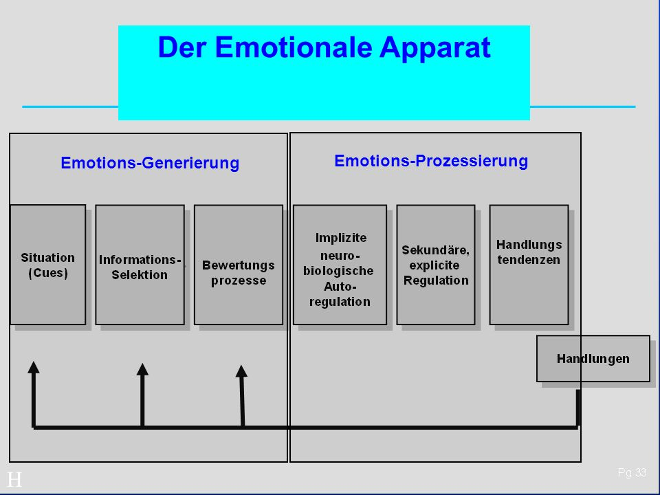 Der Emotionale Apparat