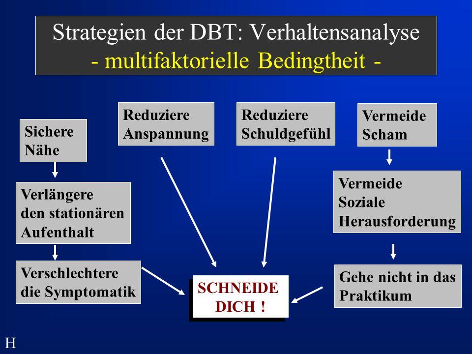 Strategien der DBT: Verhaltensanalyse - multifaktorielle Bedingtheit -