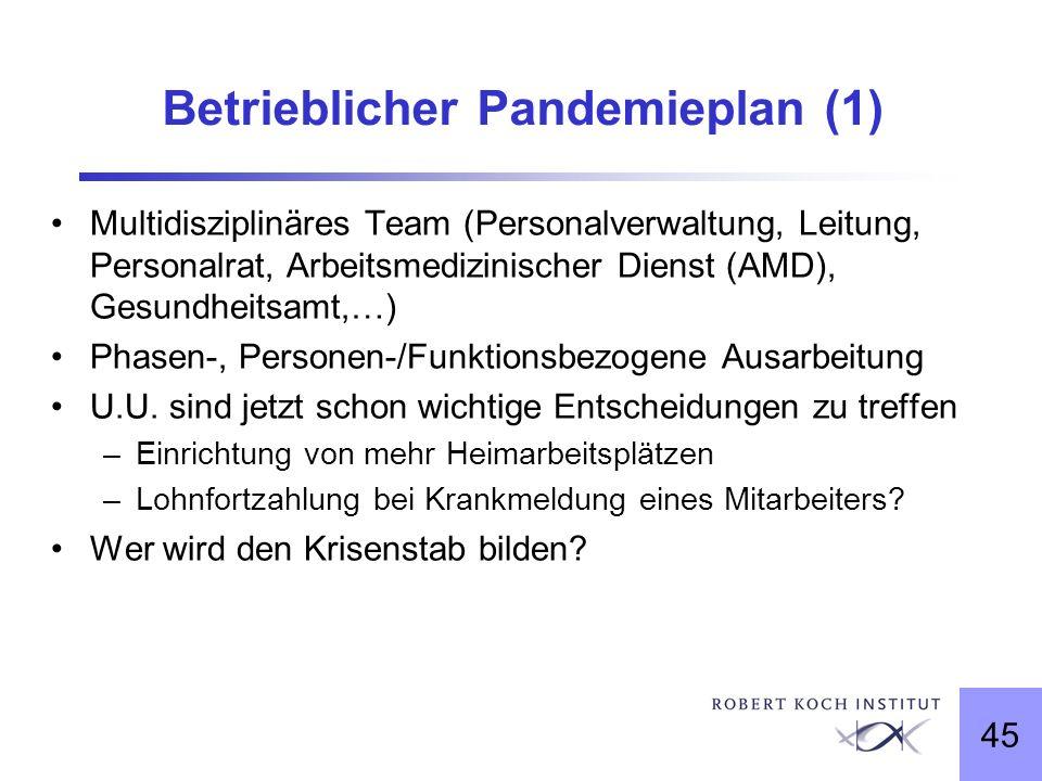 Betrieblicher Pandemieplan (1)