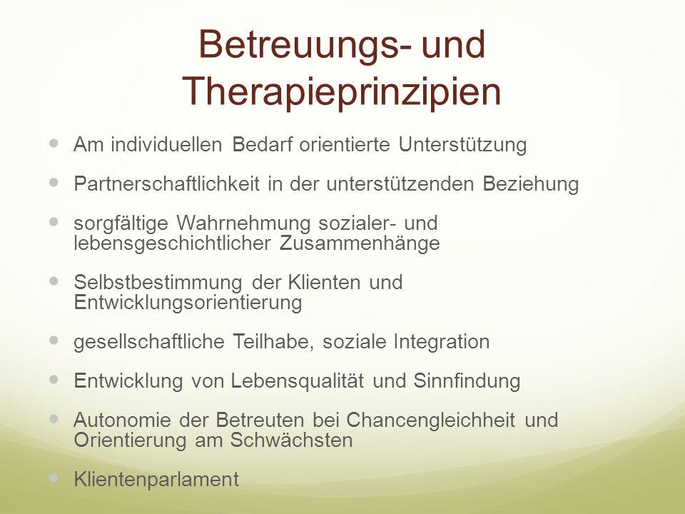 Betreuungs- und Therapieprinzipien