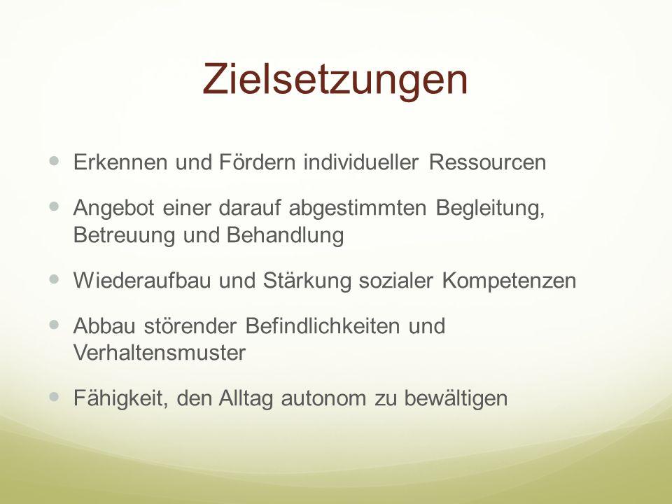 Zielsetzungen Erkennen und Fördern individueller Ressourcen