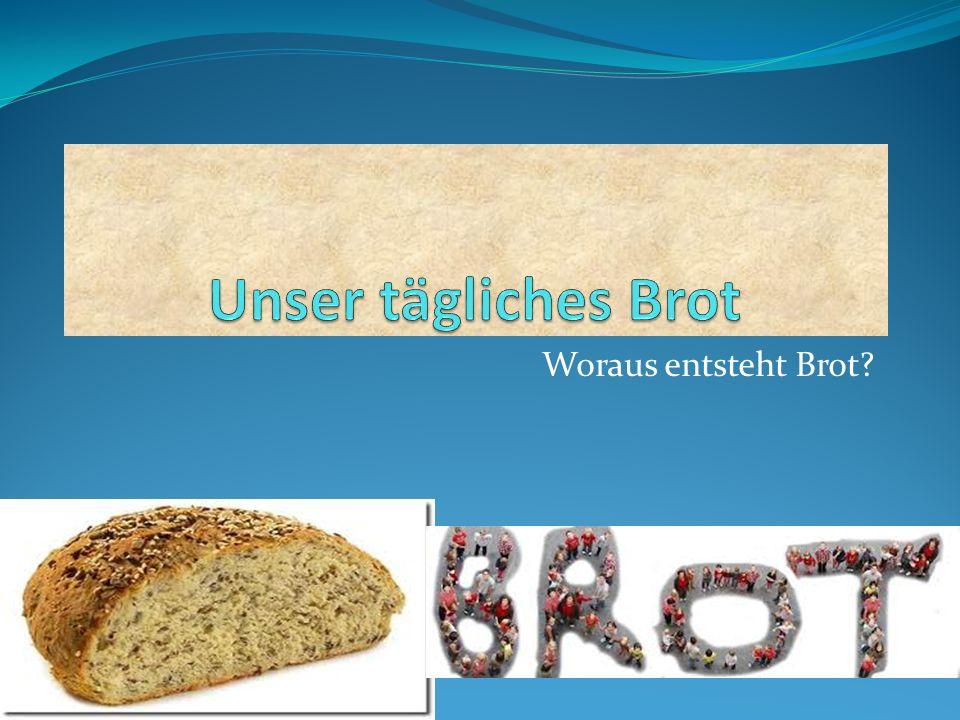 Unser tägliches Brot Woraus entsteht Brot
