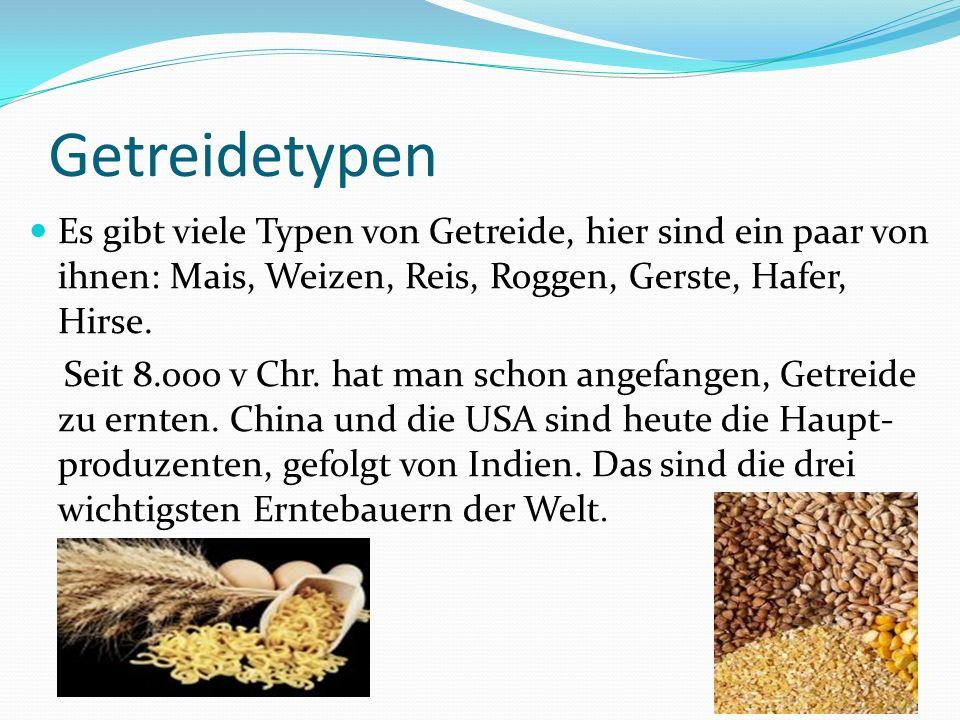 Getreidetypen Es gibt viele Typen von Getreide, hier sind ein paar von ihnen: Mais, Weizen, Reis, Roggen, Gerste, Hafer, Hirse.