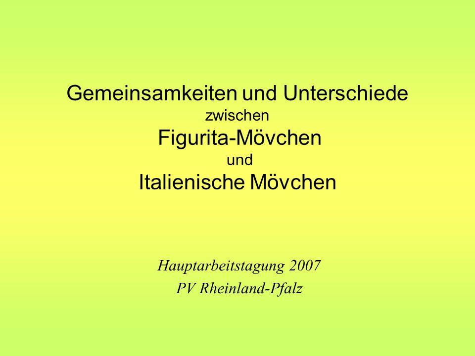 Hauptarbeitstagung 2007 PV Rheinland-Pfalz