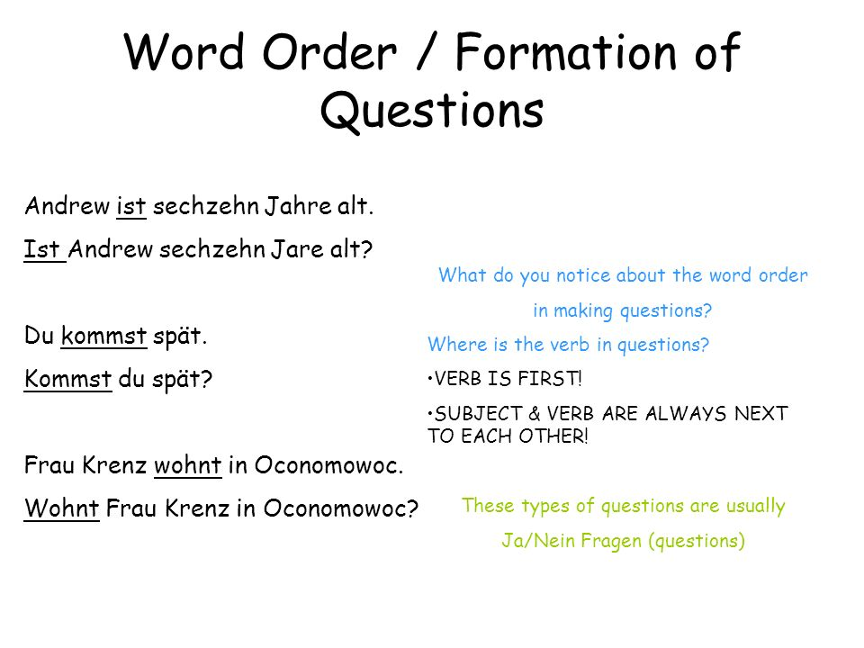Word Order / Formation of Questions