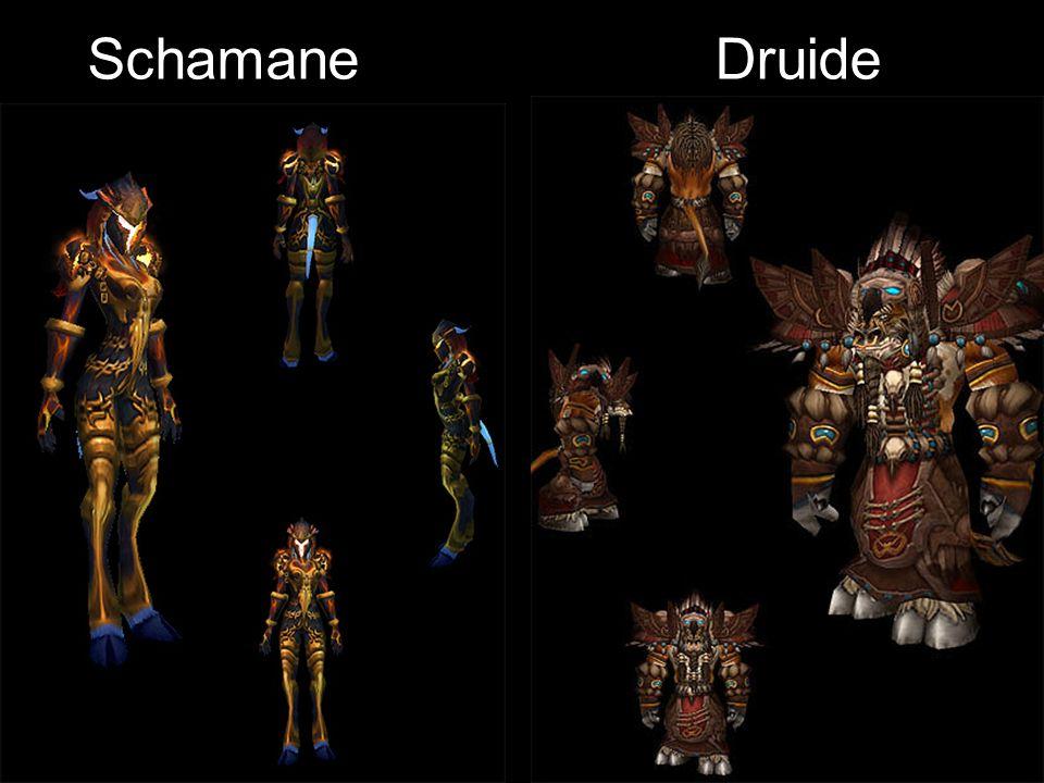 Schamane Druide