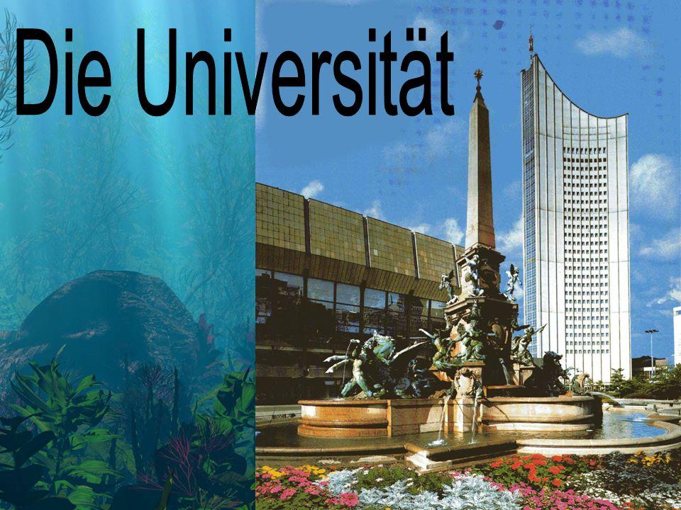 ' Die Universität