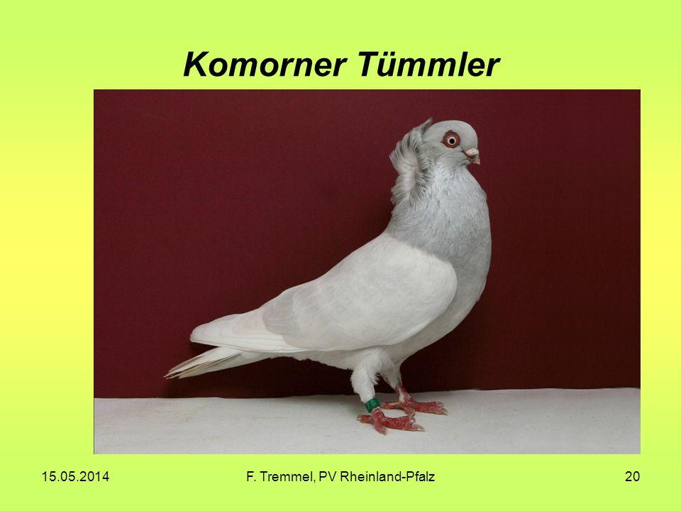 F. Tremmel, PV Rheinland-Pfalz