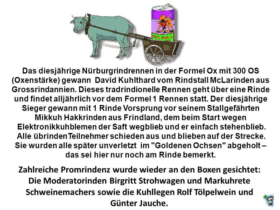 Das diesjährige Nürburgrindrennen in der Formel Ox mit 300 OS