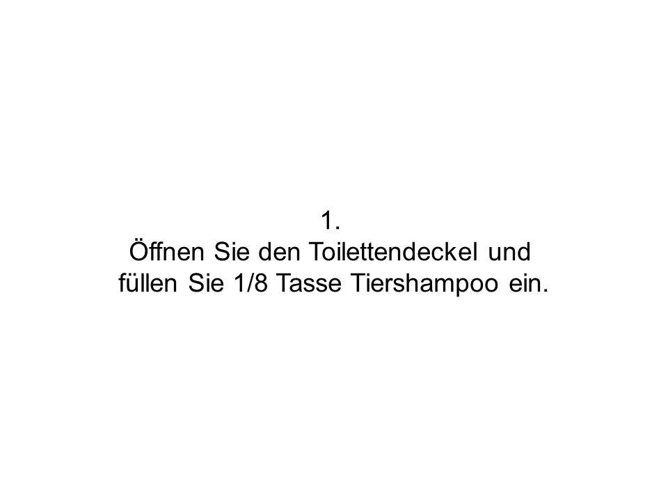 Öffnen Sie den Toilettendeckel und