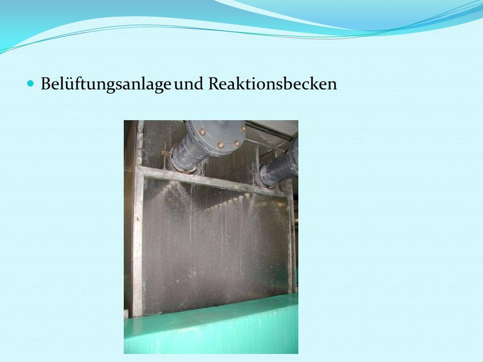Belüftungsanlage und Reaktionsbecken