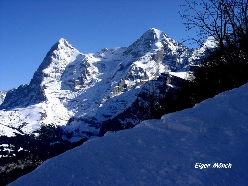Eiger Mönch