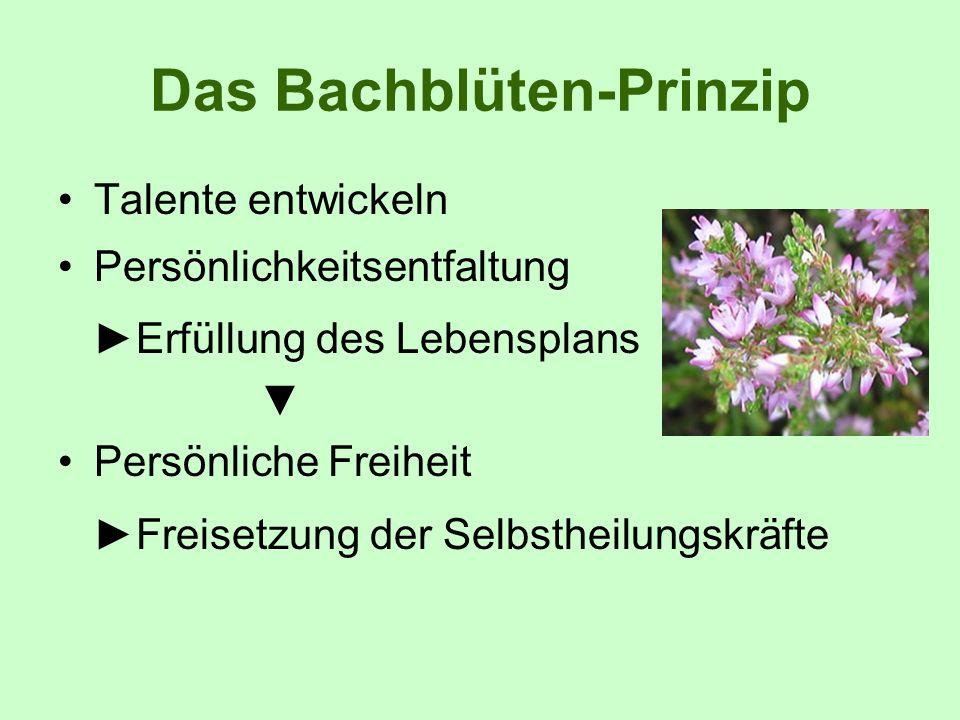 Das Bachblüten-Prinzip