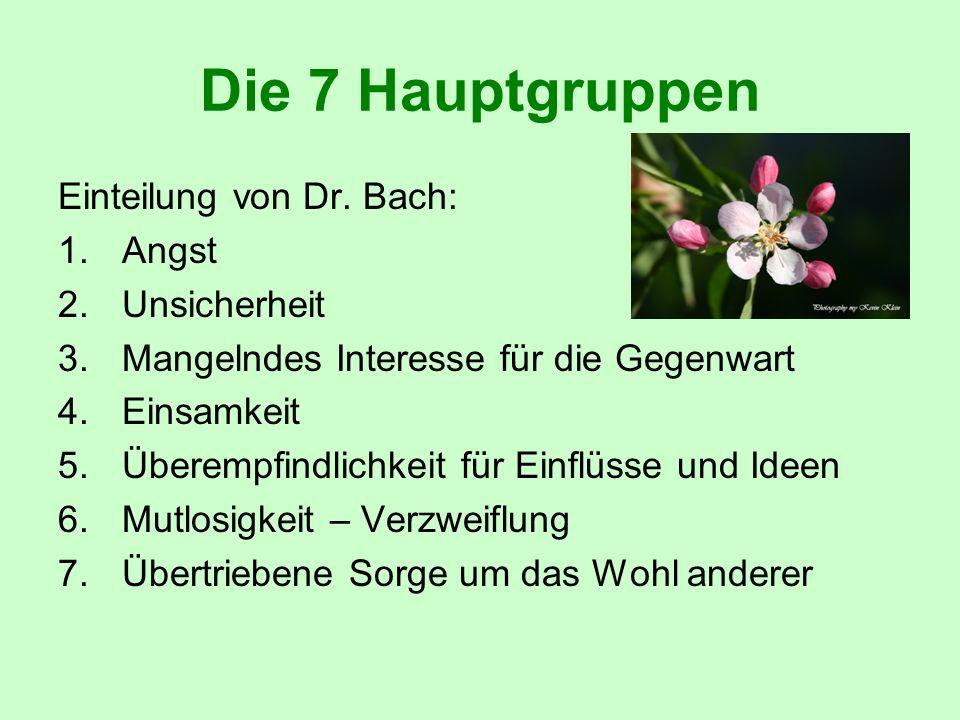Die 7 Hauptgruppen Einteilung von Dr. Bach: Angst Unsicherheit