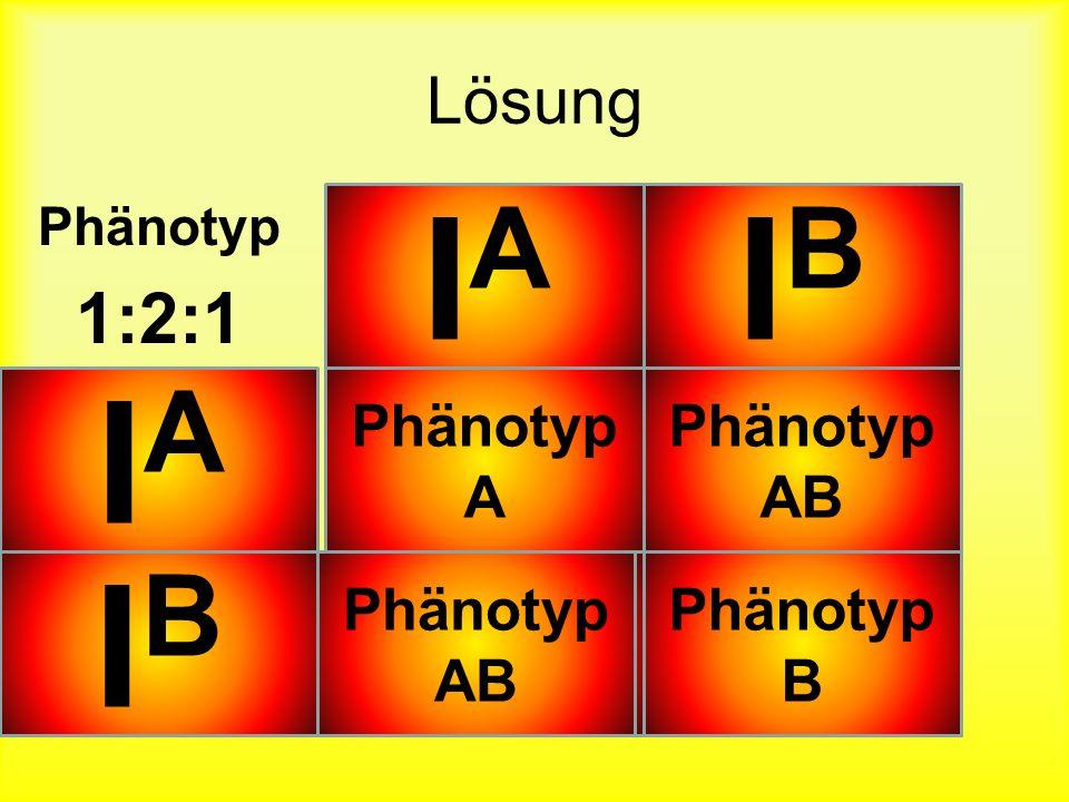 IA IB IA AA AB IB AB BB 1:2:1 Lösung Phänotyp A Phänotyp AB