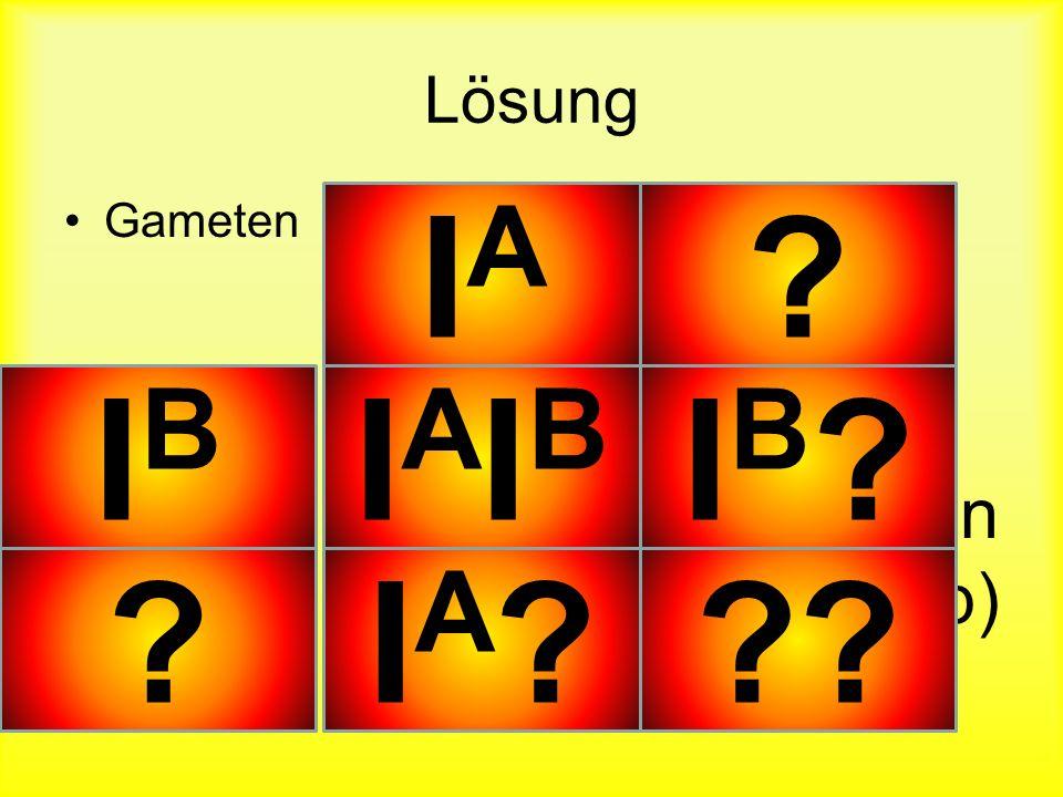 IA IB IAIB IB IA Lösung Gameten