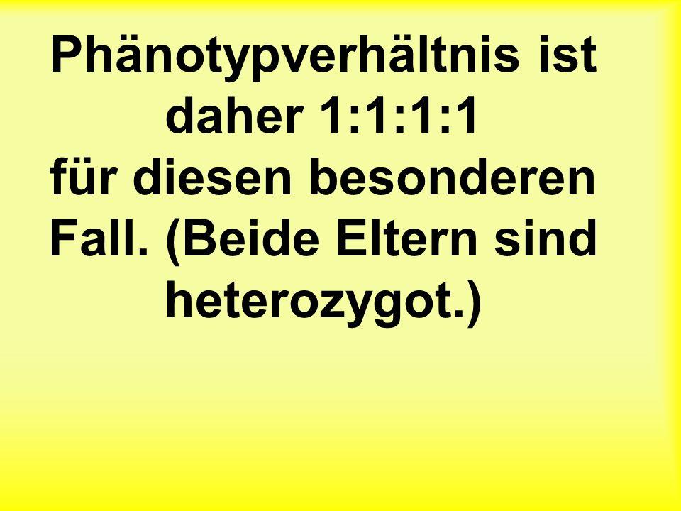 Phänotypverhältnis ist daher 1:1:1:1 für diesen besonderen Fall