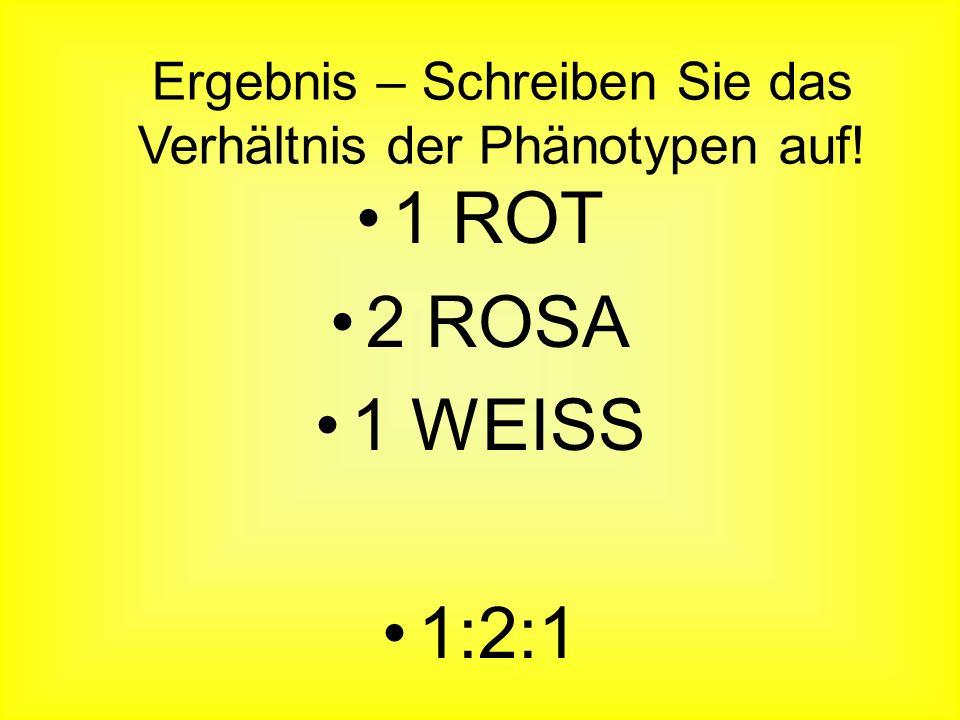 Ergebnis – Schreiben Sie das Verhältnis der Phänotypen auf!