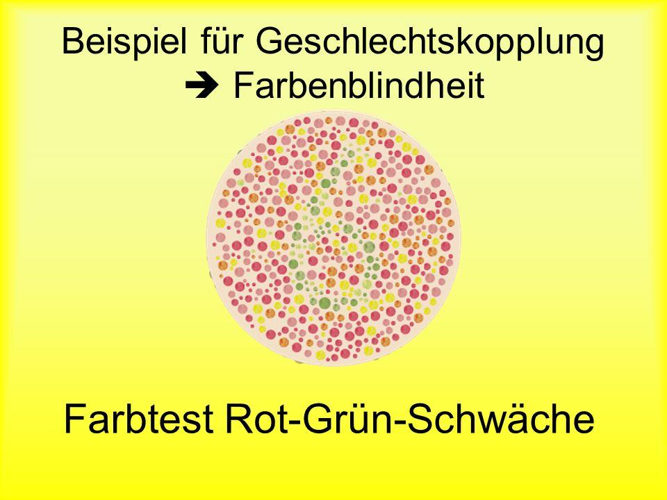 Beispiel für Geschlechtskopplung  Farbenblindheit