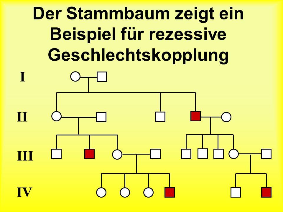 Der Stammbaum zeigt ein Beispiel für rezessive Geschlechtskopplung