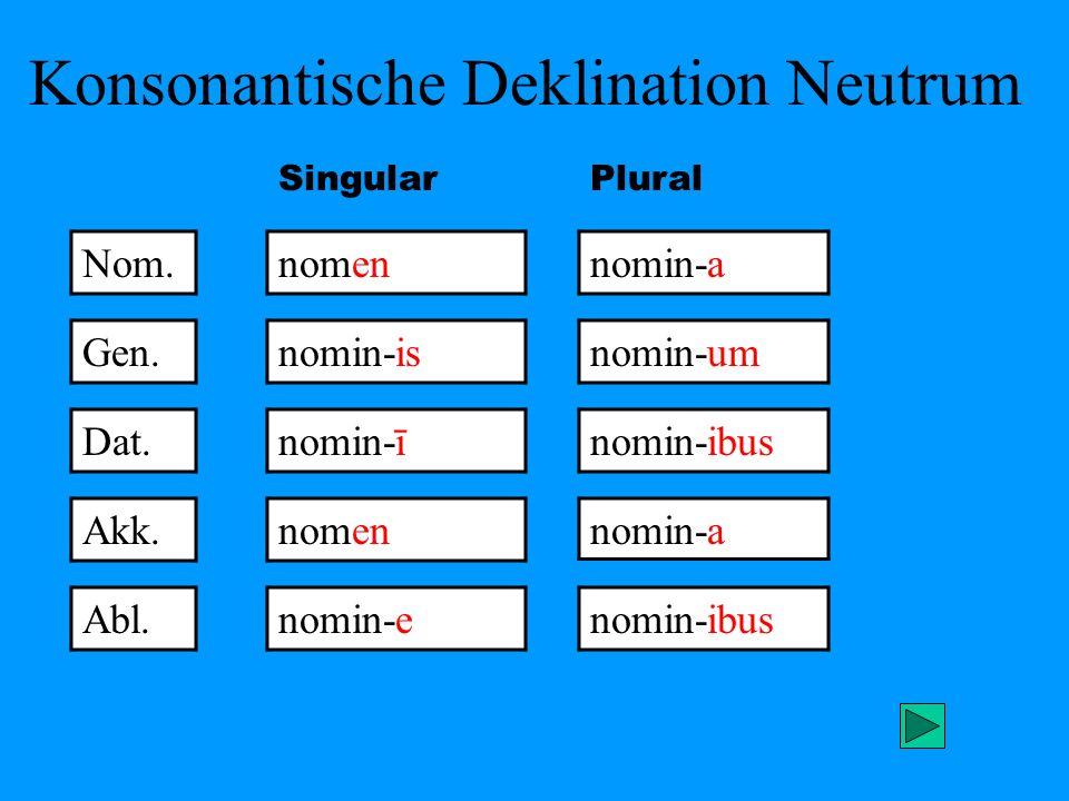Konsonantische Deklination Neutrum