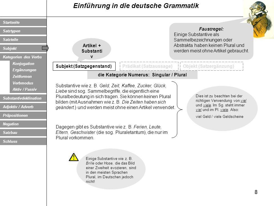 die Kategorie Numerus: Singular / Plural
