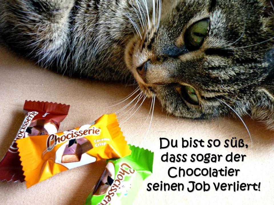 dass sogar der Chocolatier