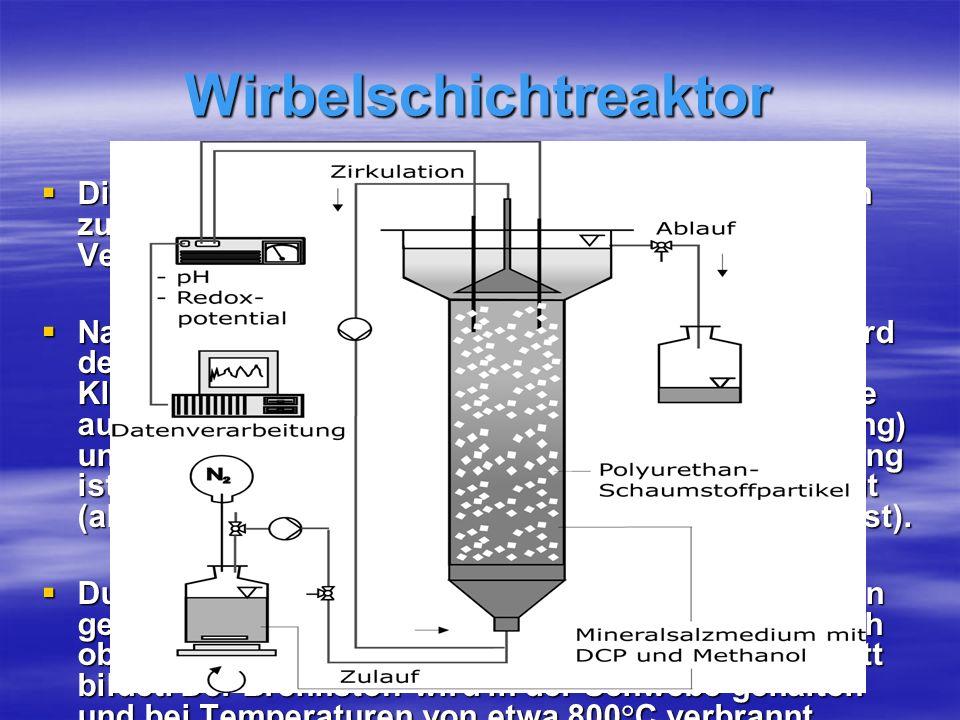 Wirbelschichtreaktor
