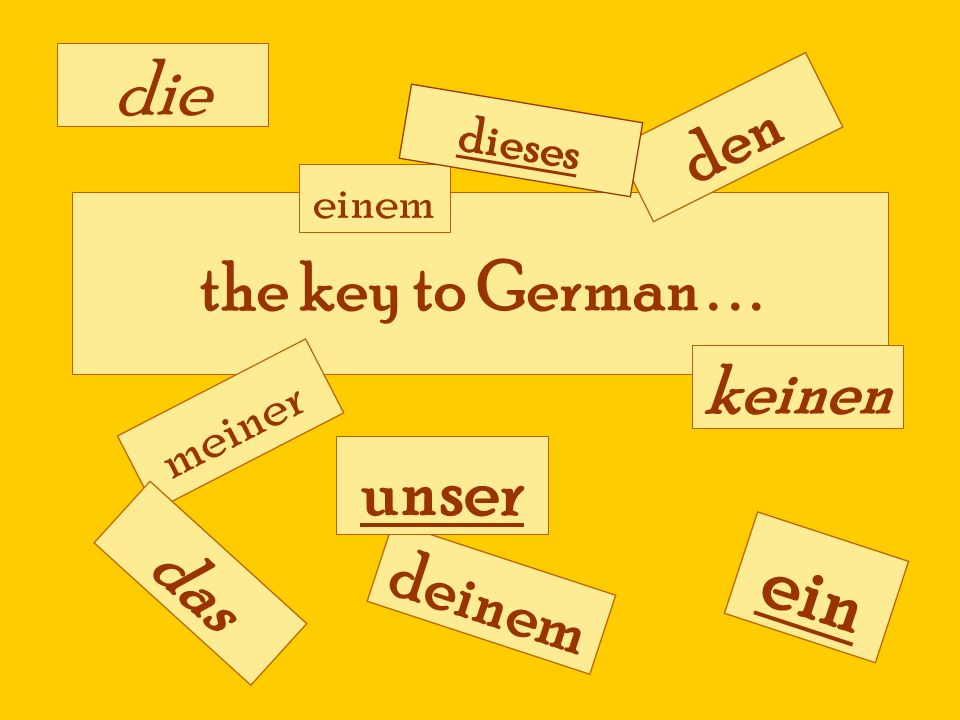 ein die unser den the key to German . . . keinen das deinem meiner