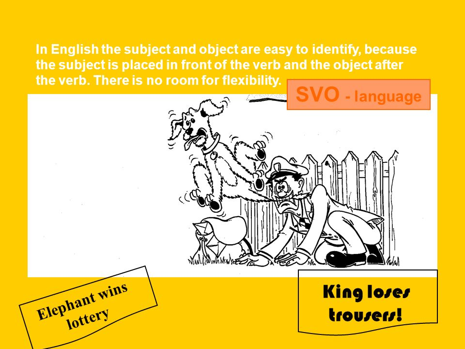 SVO - language King loses trousers! Elephant wins lottery