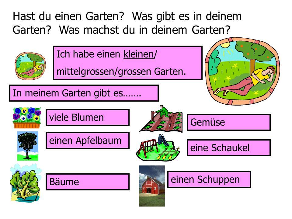 Hast du einen Garten. Was gibt es in deinem Garten