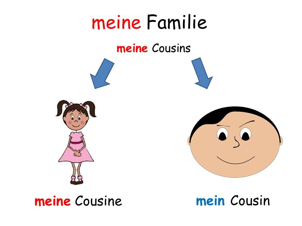 meine Familie meine Cousins meine Cousine mein Cousin
