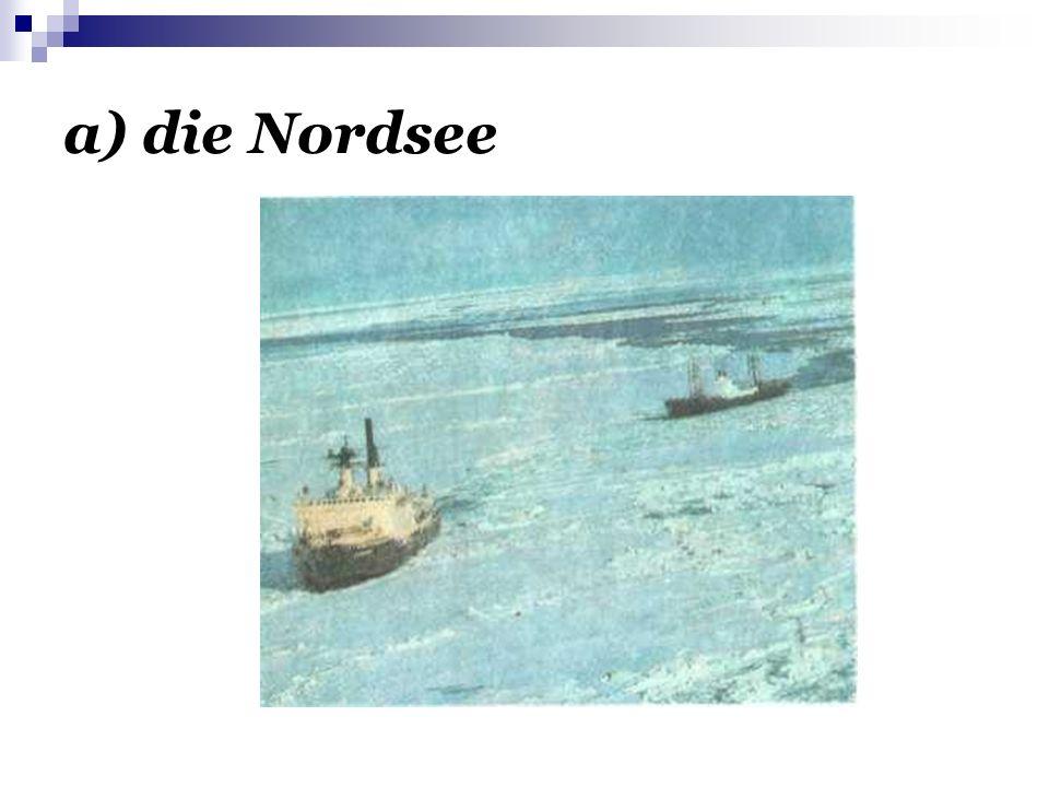 a) die Nordsee
