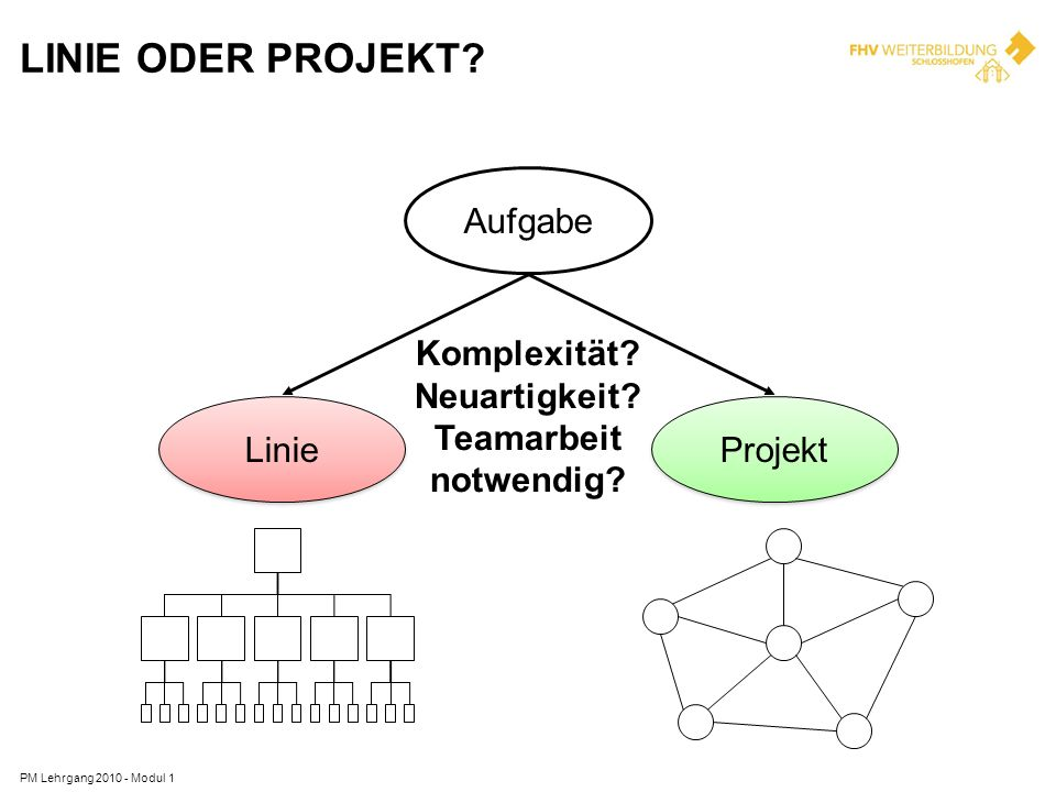 Linie oder Projekt Aufgabe Komplexität Neuartigkeit Teamarbeit