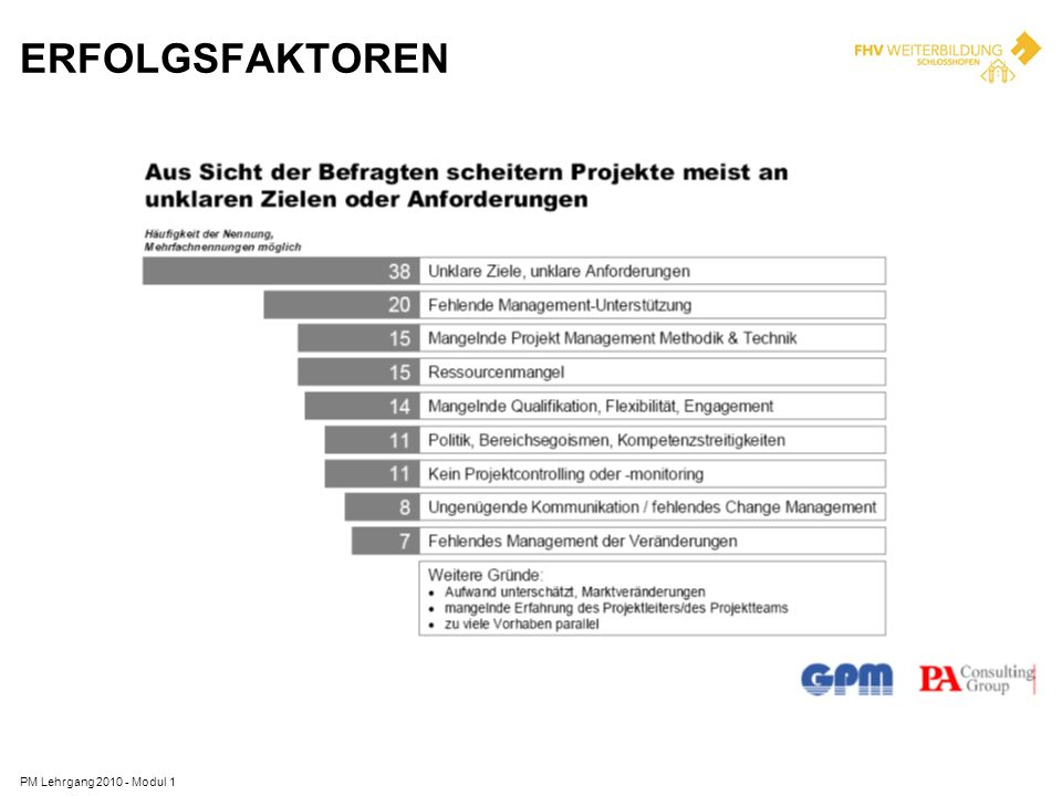 ERFOLGSFAKTOREN PM Lehrgang 2010 - Modul 1