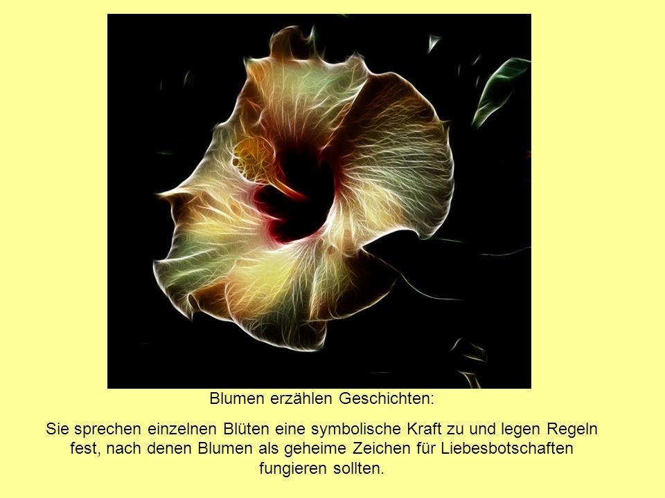 Blumen erzählen Geschichten: