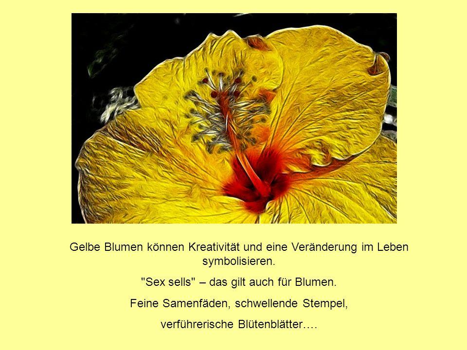 Sex sells – das gilt auch für Blumen.