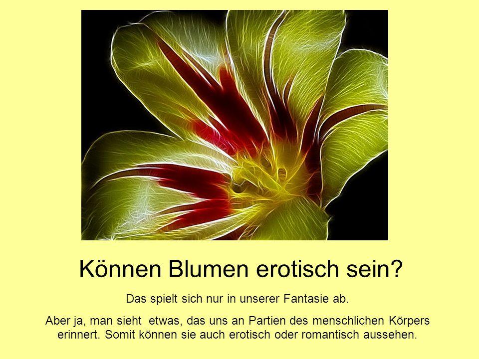 Können Blumen erotisch sein