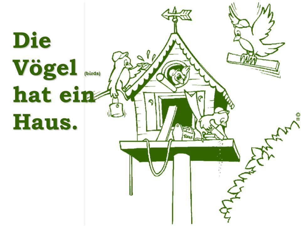 Die Vögel (birds) hat ein Haus.