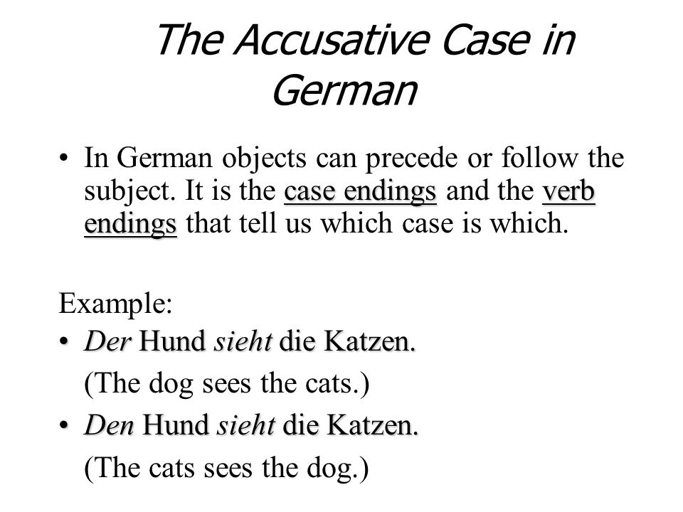 The Accusative Case in German