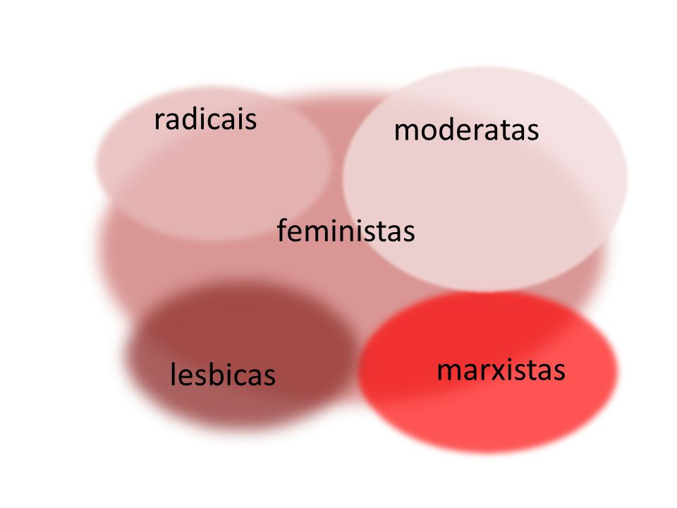 radicais moderatas feministas marxistas lesbicas