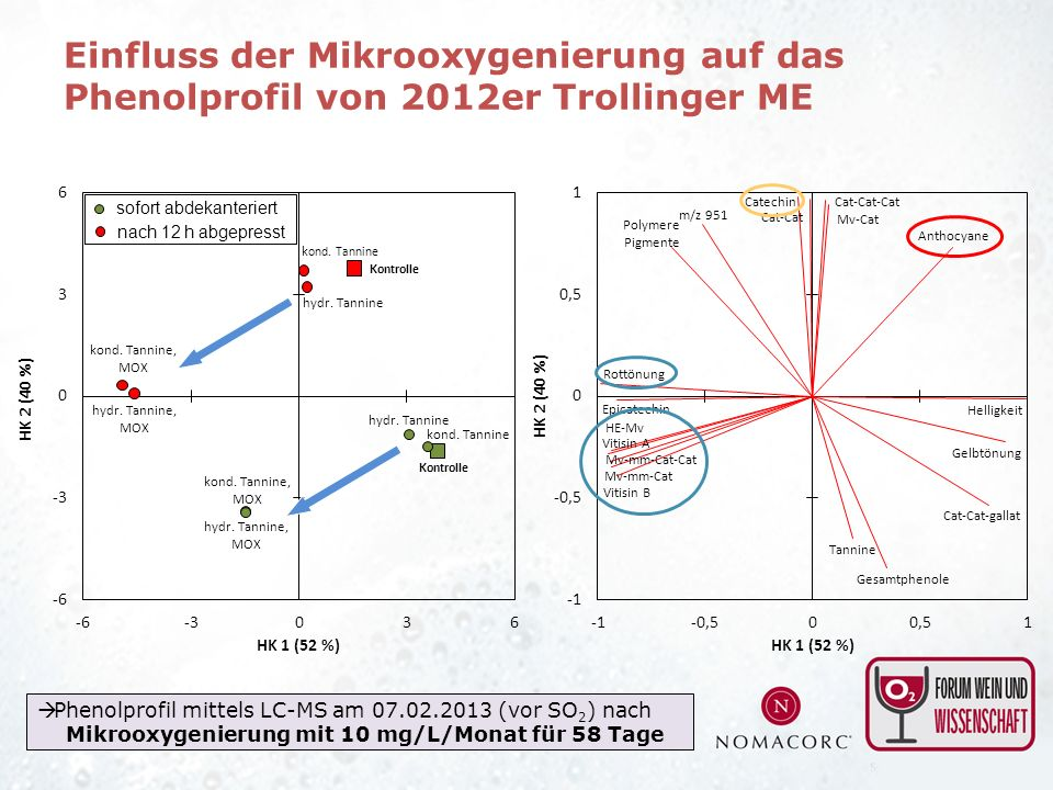 Einfluss der Mikrooxygenierung auf das