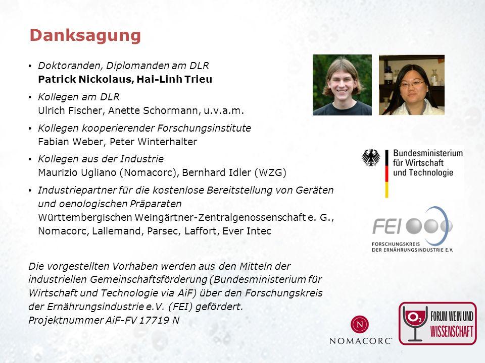 Danksagung Doktoranden, Diplomanden am DLR Patrick Nickolaus, Hai-Linh Trieu. Kollegen am DLR Ulrich Fischer, Anette Schormann, u.v.a.m.