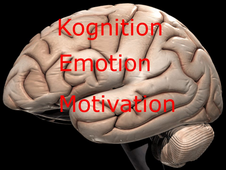 Warum kognitiv Kognition Emotion Motivation