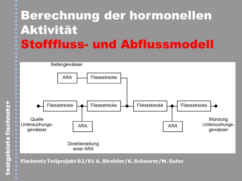 Berechnung der hormonellen Aktivität Stofffluss- und Abflussmodell