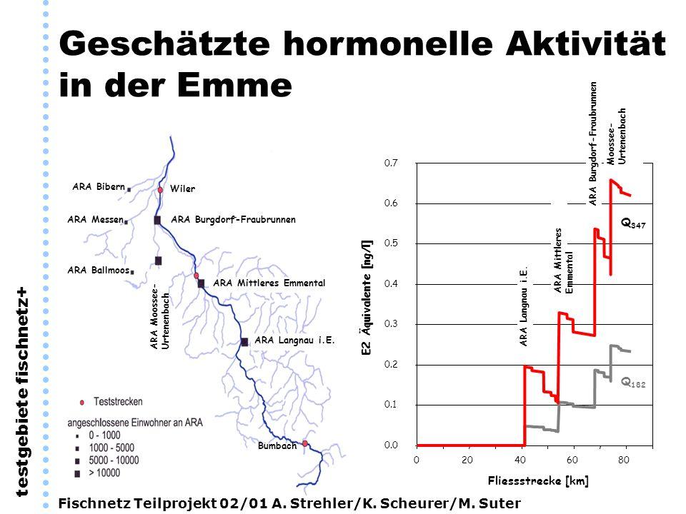 Geschätzte hormonelle Aktivität in der Emme