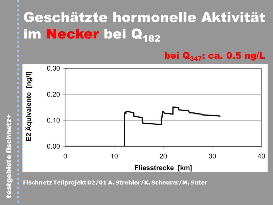 Geschätzte hormonelle Aktivität im Necker bei Q182
