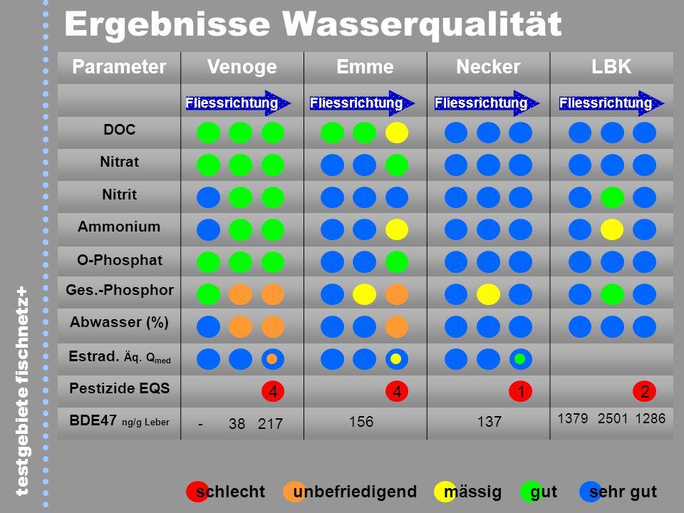 Ergebnisse Wasserqualität