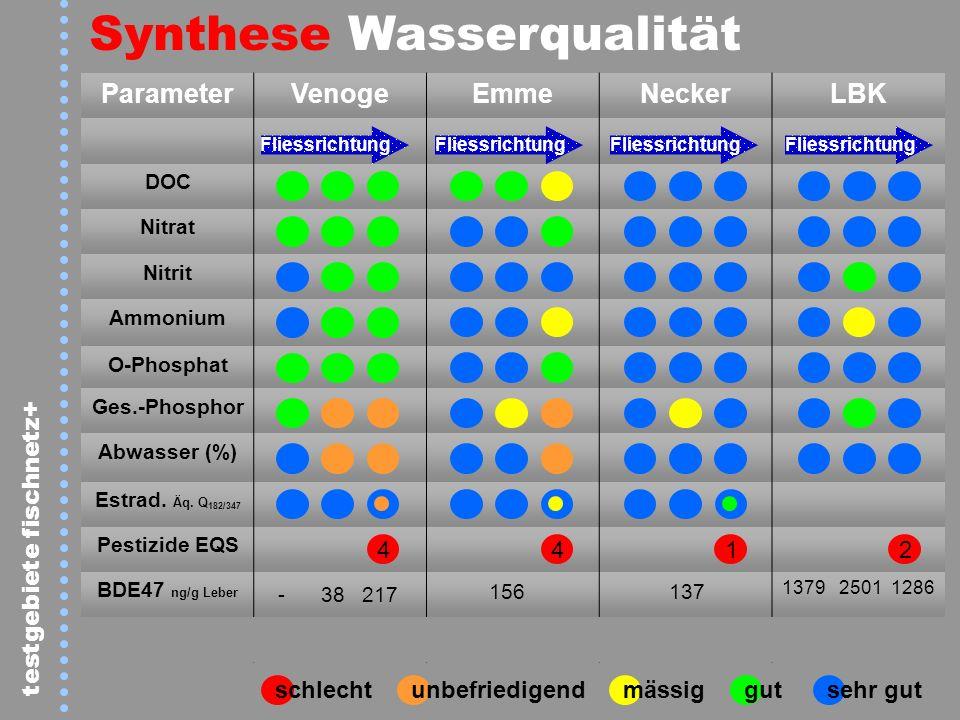 Synthese Wasserqualität